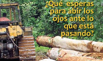 Foto Sinodo Amazonía